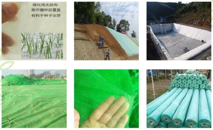 绿色绿化无纺布产品介绍